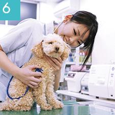動物看護師の基礎から応用まで実践的に学ぶ