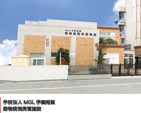 学校法人MGL学園附属 動物病院実習施設