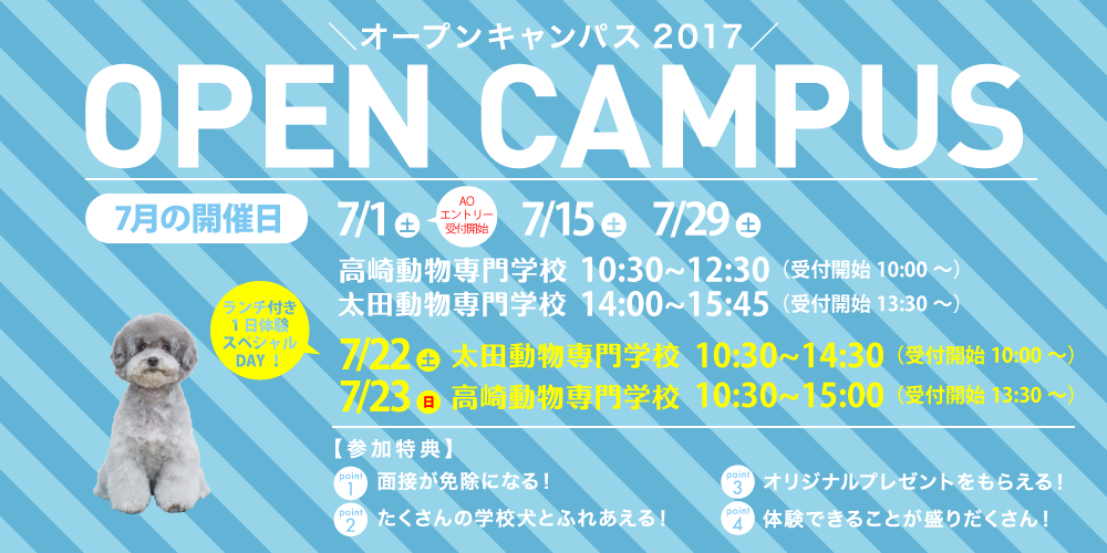 7月オープンキャンパス