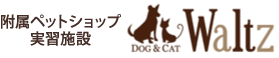 DOG & CAT Waltz
