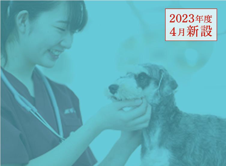 動物看護コース
